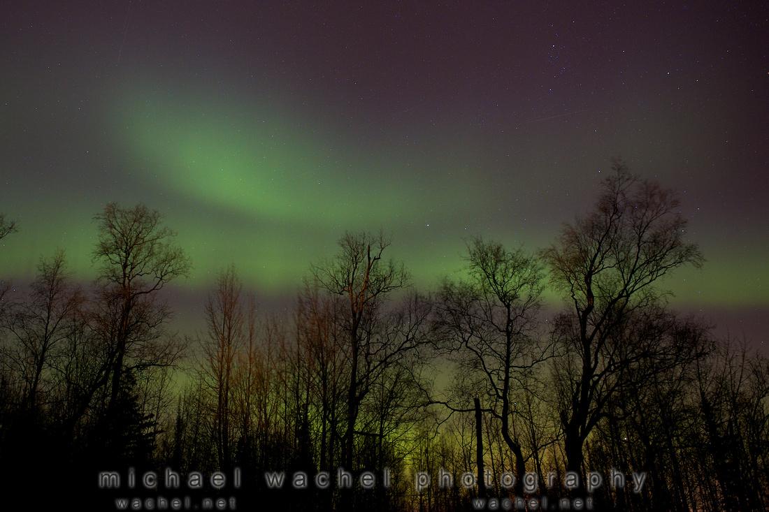 Alaska family photographer northern lights in wasilla and palmer